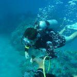 How To Enjoy Phuket Diving